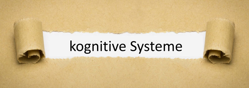 kognitive Systeme